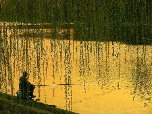 Тесто для рыбалки советы